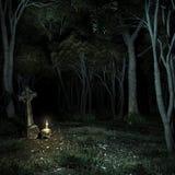 Nacht in het donkere bos Royalty-vrije Stock Fotografie