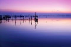 Nacht in het meer royalty-vrije stock afbeelding
