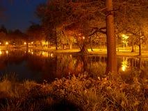 Nacht in het park Stock Foto's