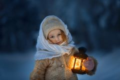Nacht in het sneeuwbos stock foto