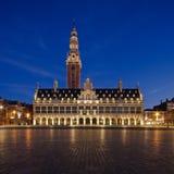 Nacht Leuven Stock Afbeeldingen