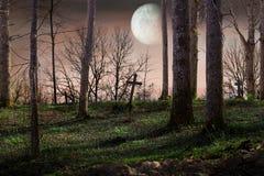 Nacht met een volle maan Royalty-vrije Stock Afbeeldingen
