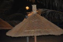 Nacht met volle maan en stroparaplu's op het strand Royalty-vrije Stock Afbeeldingen