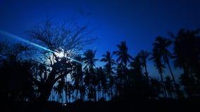 nacht stockfoto