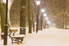 Nacht in park Royalty-vrije Stock Afbeelding