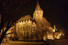 Nacht sceen von Vajdahunyad-Schloss, Budapest, Ungarn Stockfotografie
