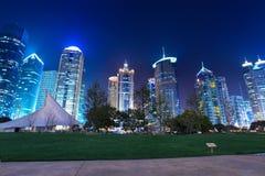 Nacht Shanghai in park royalty-vrije stock foto