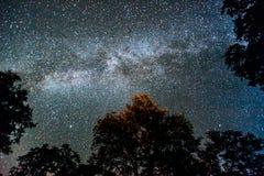 nacht sterrige hemel Royalty-vrije Stock Afbeelding