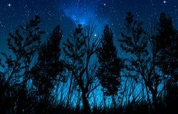 Nacht sterrige hemel met een melkachtige manier en sterren, in de voorgrondbomen en de struiken van bosgebied stock foto's