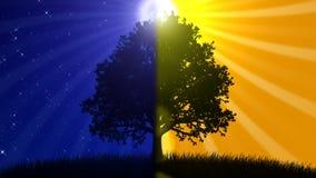 Nacht und Tag (lebhafter Hintergrund) lizenzfreie abbildung