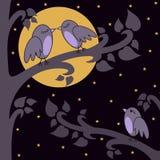 Nacht-Vögel lizenzfreie abbildung