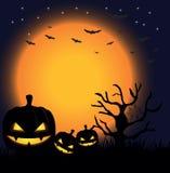Nacht van Halloween royalty-vrije stock afbeelding