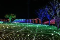 Nacht van het festivalkorea van de Illumia de Lichte Verlichting stock foto