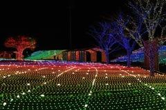 Nacht van het festivalkorea van de Illumia de Lichte Verlichting royalty-vrije stock foto