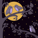 Nacht-vogels royalty-vrije illustratie