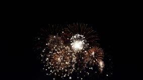 Nacht von Feuerwerken stockbild