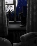 Nacht zonder licht stock illustratie