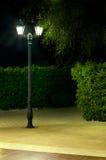 Nachtabbildung der Lampe im Park Stockfotografie