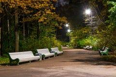 Nachtansicht der Gasse im Park Lizenzfreie Stockfotografie