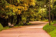 Nachtansicht der Gasse im Park Stockfotografie