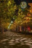 Nachtansicht der Königin Elizabeth Olympic Park, London Großbritannien Stockfotografie