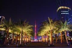 Nachtansicht-Palmen bei Huacheng Hui Lizenzfreies Stockbild