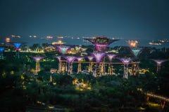 Nachtansicht von Gärten durch die Bucht von Marina Bay Sands SkyPark Stockbilder