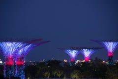 Nachtansicht von Gärten durch die langsame Fensterladenunschärfe der Bucht Lizenzfreies Stockfoto