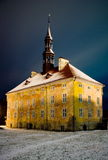 Nachtansicht von Narva Rathaus. lizenzfreie stockfotografie
