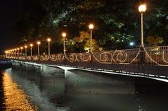 Nachtbrücke Lizenzfreies Stockbild