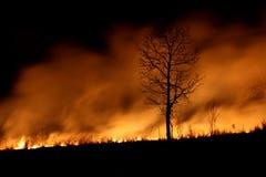 Nachtbrand Stockfoto
