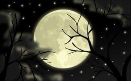 Nachtelijke hemel met sterren en maan stock illustratie