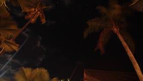 Nachtelijke tijdtijdspanne | sterrenpas over de bomen in de nacht sk stock videobeelden