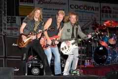 Nachtförsterband im Konzert Stockfotografie