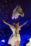 Nachtfestival Singapore 2015 Royalty-vrije Stock Foto