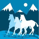Nachtgebirgslandschaft und drei Pferde. Stockfotografie