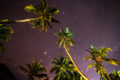 Nachthemel in het Eiland van Zanzibar Royalty-vrije Stock Fotografie