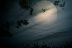 Nachthemel met volle maan Royalty-vrije Stock Afbeelding