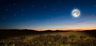 Nachthintergrund Lizenzfreie Stockfotografie