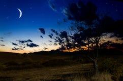 Nachthintergrund Lizenzfreie Stockfotos