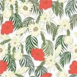 Nachtkaktus-Blume stock abbildung