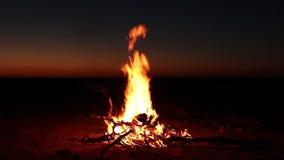 Nachtkampvuur stock videobeelden