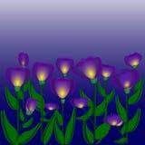 Nachtkleuren Royalty-vrije Stock Foto