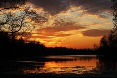 Nachtlandschaft - die Satzsonne im Abendhimmel über dem See, der Schattenbilder von Bäumen reflektiert Lizenzfreie Stockfotografie