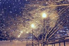 Nachtlandschaft im Winterpark Lizenzfreies Stockbild