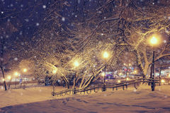 Nachtlandschaft im Winterpark Stockfotografie