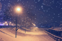 Nachtlandschaft im Winterpark Stockbilder
