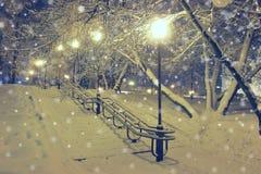 Nachtlandschaft im Winterpark Stockbild