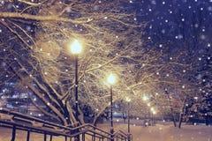 Nachtlandschaft im Winterpark Stockfotos