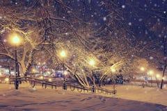 Nachtlandschaft im Winterpark Stockfoto